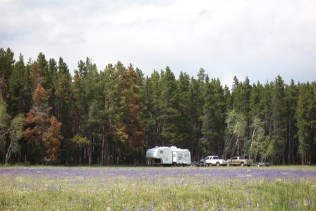 RV Boondocking on the Medicince Bow NF