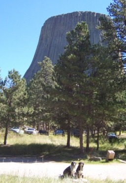 Buck and Lily at Devils Tower