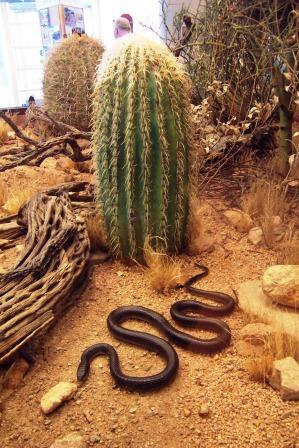 a good snake