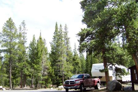 Willow Campground site