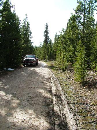 Backroading on the Medicince Bow National Forest