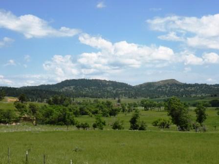 Black Hills View
