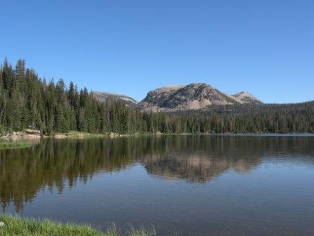 A Mirror Lake View
