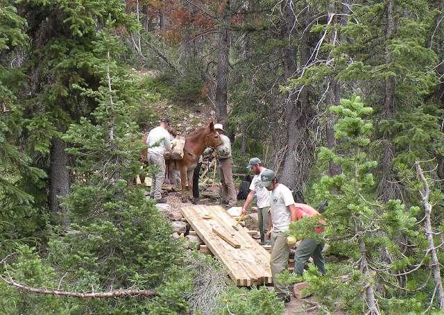 Mule Packer dumping rock