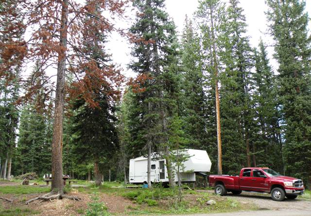 Meadows Camp on Rout National Forest