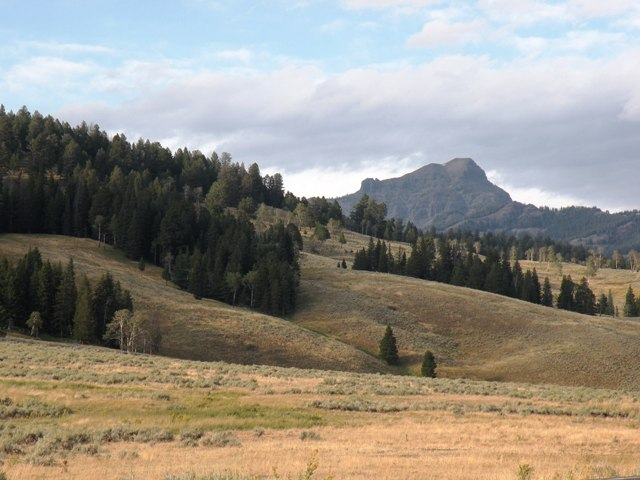In the Lamar Valley