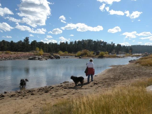 banks of Dowdy Lake