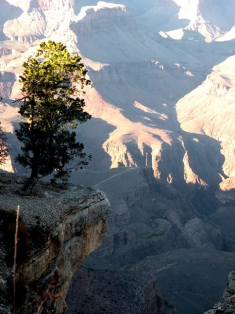 a long way down in the Grand Canyon