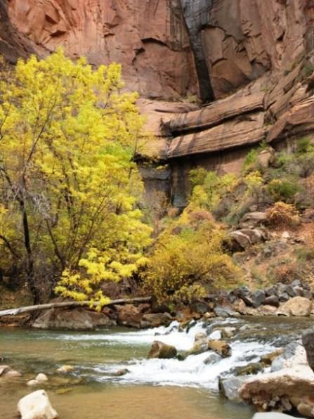 Virgin River along the Riverside Walk in Zion