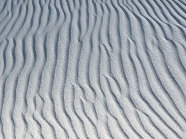 Natural Abstract Art in the White Sands