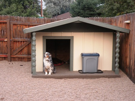 Dog House... or Dog Mansion?