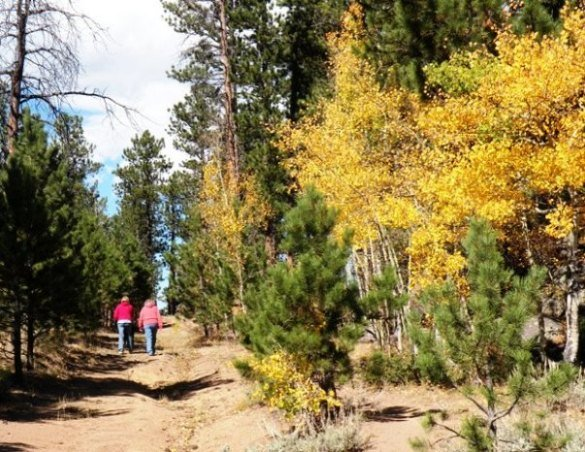 Hiking in Red Feather Colorado