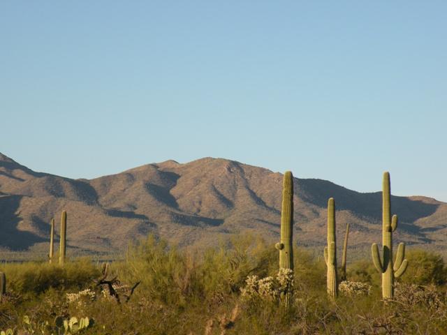 Desert View near Justins RV Park