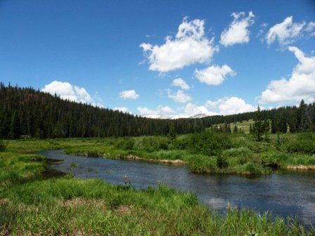 Meadow along Nash Creek in the Snowy Range Wyoming
