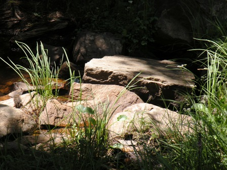 Libby Creek feeder stream in the Snowy Range Wyoming