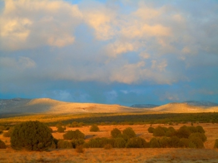 Kaibab National Forest RV Boondocking Camp