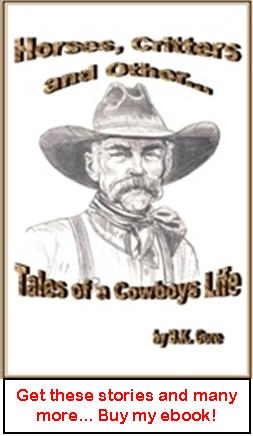 Horses Critters and Other Tales of a Cowboy's life ebook